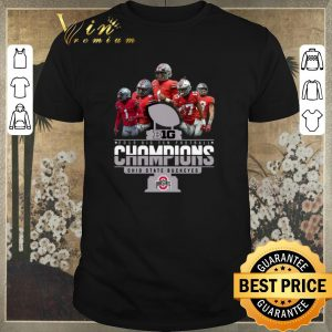 Top Big 2019 Big Ten Football Champions Ohio State Buckeyes shirt sweater