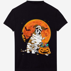 Nice Boxer Dog With Candy Pumpkin Halloween Gifts shirt