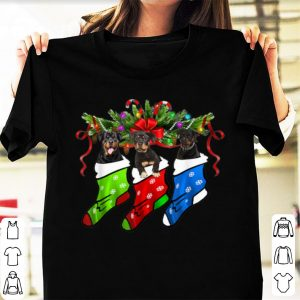 Awesome Rottweiler In Sock Christmas Merry Xmas shirt