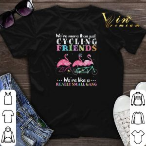 Flamingos we're more than just cycling friends really small gang shirt sweater