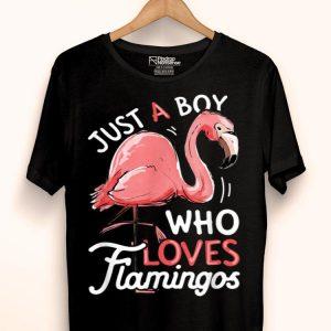 Just A Boy Who Loves Flamingos Pink Flamingo Lovers shirt