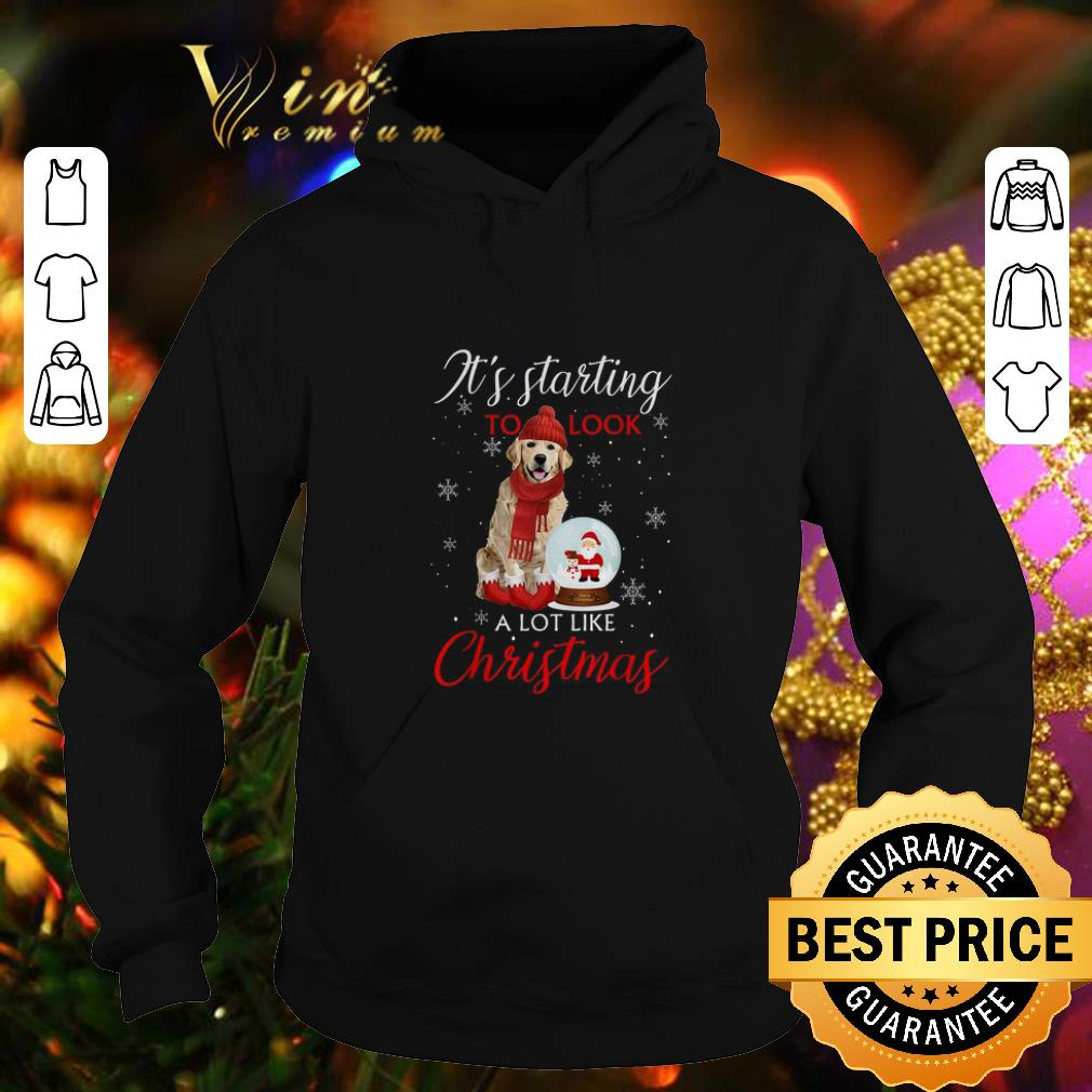 Nice Golden Retriever It s starting to look a lot like Christmas shirt 4 - Nice Golden Retriever It's starting to look a lot like Christmas shirt