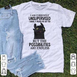 Night Fury I am currently unsupervised I know it freaks me out too shirt