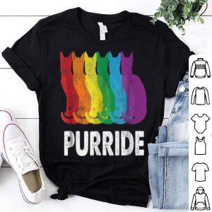 Pride Colorful LGBT Purride Rainbow Cat Lover shirt