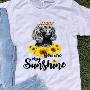 Official Boykin Spaniel You Are My Sunshine Sunflower shirt