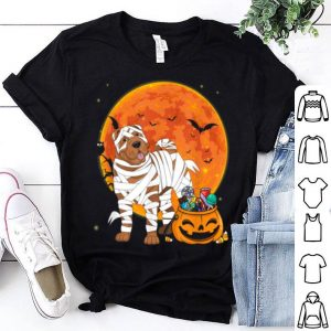 Awesome Shar Pie Dog With Candy Pumpkin Halloween shirt