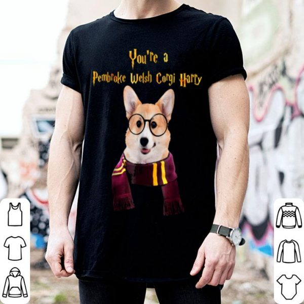 Top Pembroke Welsh Corgi Dog Potter Halloween - You're A shirt