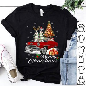Beautiful Border Collie on Red Truck Christmas Pajama Dog Lover Gifts shirt