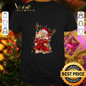 Top Pomeranian Reindeer Christmas shirt