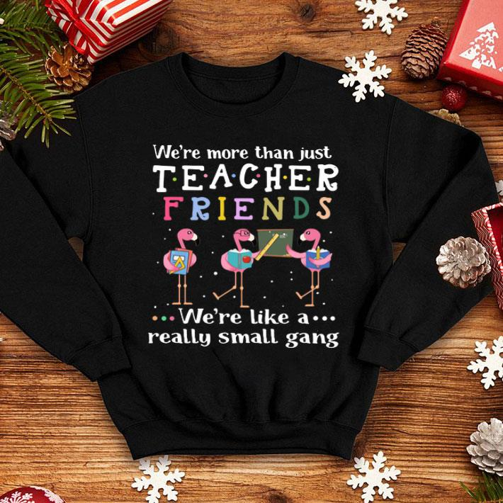 Flamingos we're more than just teacher friends we're like a shirt