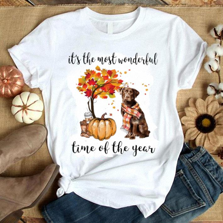 Pumpkin & Labrador it's the most wonderful time of the year shirt