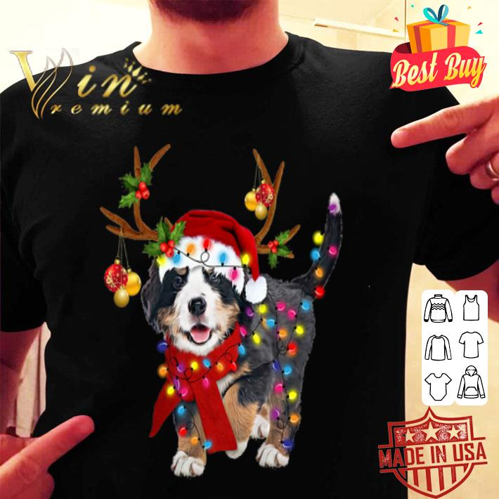 Bernese mountain gorgeous reindeer Christmas shirt