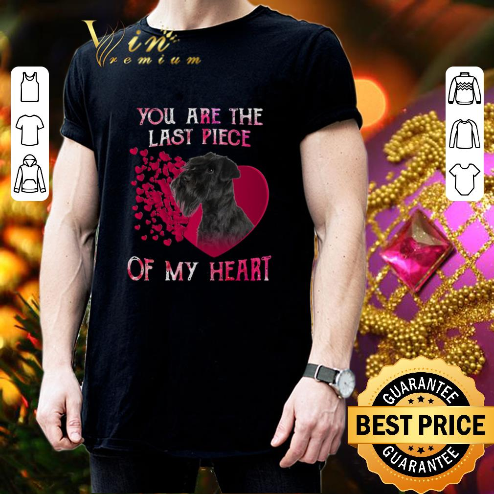 Standard Schnauzer you are the last piece of my heart Valentine shirt 3