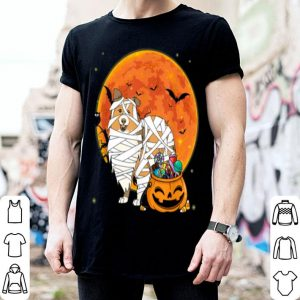 Awesome Sheltie Dog With Candy Pumpkin Halloween Gifts shirt