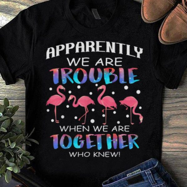 Top Apparently We're Trouble When We're Together Who Knew Flamingo shirt