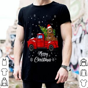 Beautiful Sloth Rides Red Truck Christmas Pajama Gift shirt