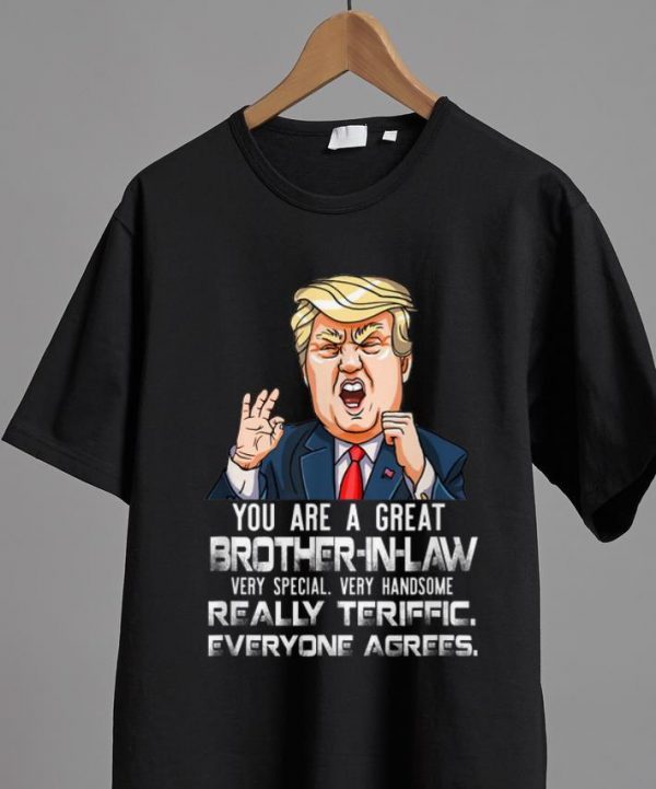 Official You Are A Great Brother-in-law Really Teriffic Everyone Agrees shirt