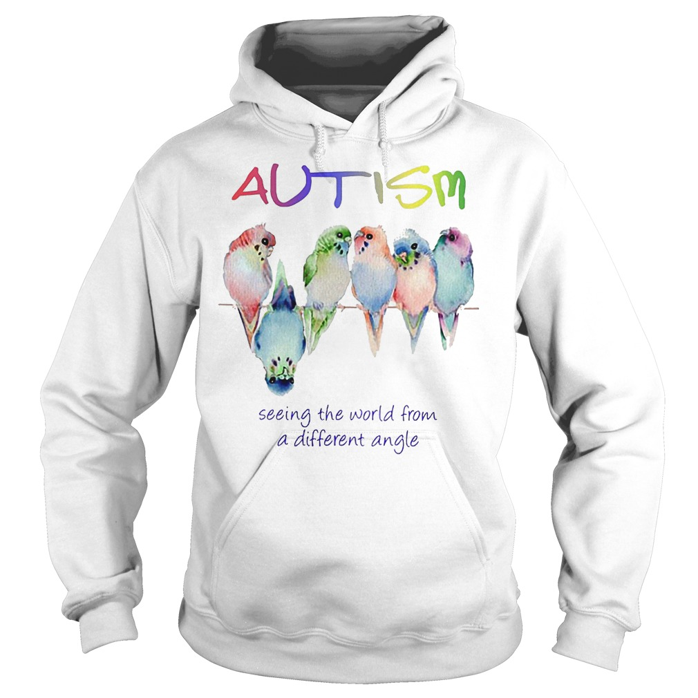 Original Autism seeing the world from a different angle shirt Hoodie