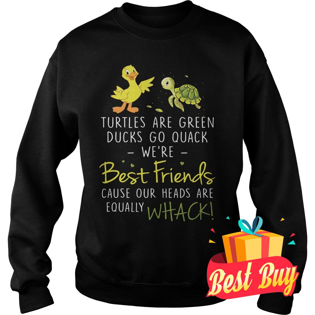 Premium Turtles are green ducks go quack we're best friend cause our heads are equally whack Shirt Sweatshirt Unisex