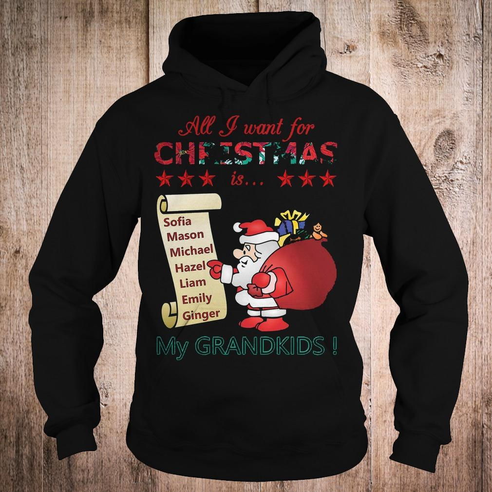 Best Price All i want for Christmas is Sofia Mason Michael Hazel Liam Emily Ginger my grandkids shirt Hoodie