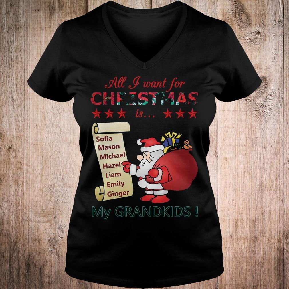 Best Price All i want for Christmas is Sofia Mason Michael Hazel Liam Emily Ginger my grandkids shirt Ladies V-Neck