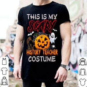 Awesome This Is My Scary History Teacher Costume Halloween shirt