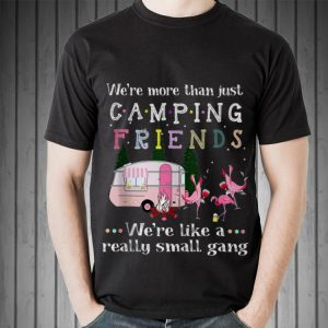 We're More Than Just Camping Friends Flamingo Beer And Wine sweater
