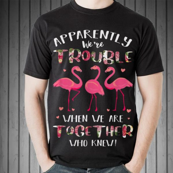Flamingo Apparently We're Trouble When We Are Together shirt