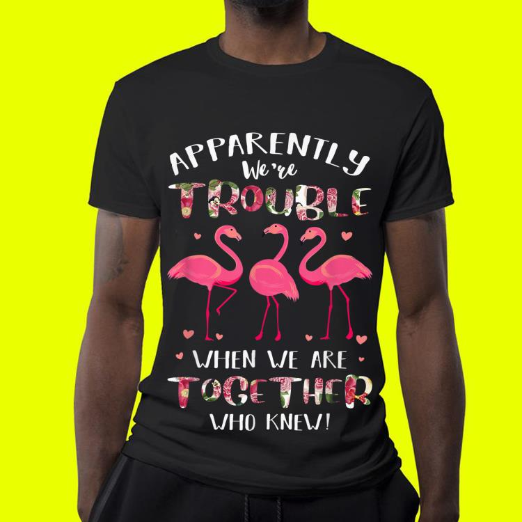 Flamingo Apparently We re Trouble When We Are Together shirt 4 - Flamingo Apparently We're Trouble When We Are Together shirt