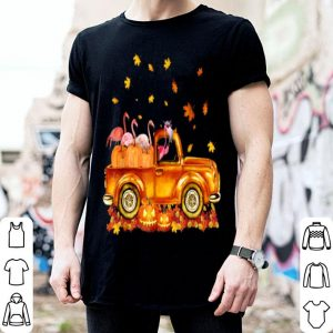 Awesome Happy Halloween Flamingo Cute Gift Pumpkin Truck shirt