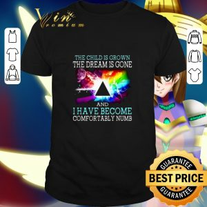 Best Pink Floyd the child is grown and i have become comfortably numb shirt
