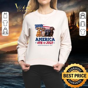 Nice Dachshund America 4th July Independence Day shirt