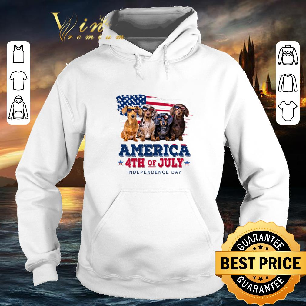 Nice Dachshund America 4th July Independence Day shirt 4 - Nice Dachshund America 4th July Independence Day shirt
