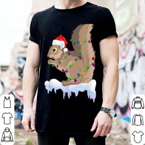 Top Funny Squirrel Christmas Decorations Santa Hat Xmas Lights sweater
