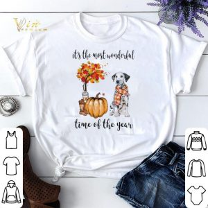 Dalmatian & Pumpkin it's the most wonderful time of the year shirt sweater