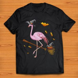 Pretty Flamingo Witch Easy Halloween Costume Party shirt