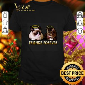 Awesome Grumpy and Lil Bub friends forever shirt