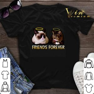Grumpy and Lil Bub friends forever shirt sweater