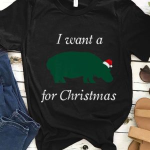 Top I Want a Hippopotamus for Christmas Cute Hippo sweater