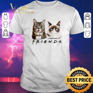 Top Lil Bub Friends Cats Grumpy shirt sweater