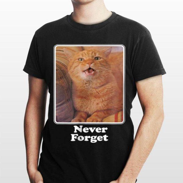 Netflix Stranger Things Never Forget shirt