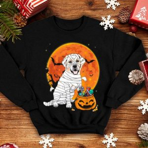 Premium Labrador Retriever Dog Candy Pumpkin Halloween Gifts shirt