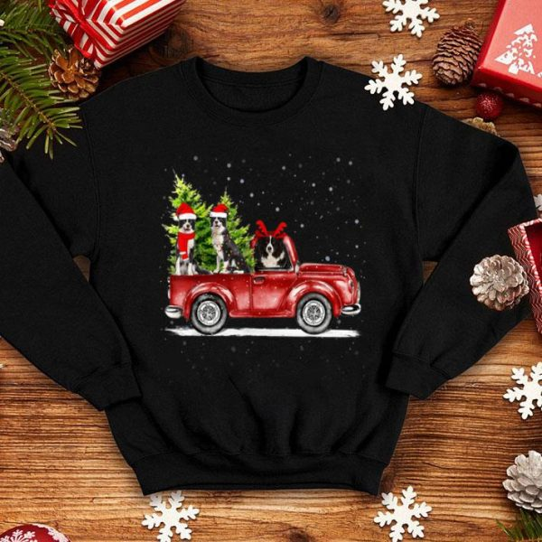 Pretty Christmas Three Border Collie Ride Red Truck Xmas Santa Hat sweater