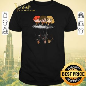 Funny Harry Potter chibi reflection water mirror Ron and Hermione shirt sweater