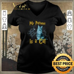 Awesome Harry Potter My Patronus Is A Cat Maine Coon shirt sweater