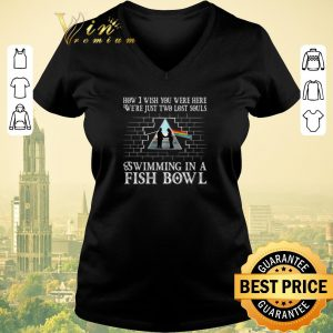 Premium Pink Floyd how i wish you were here we're just two lost souls shirt sweater