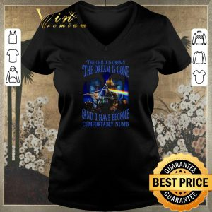 Official Comfortably Numb lyrics Pink Floyd Delicate Sound of Thunder shirt sweater