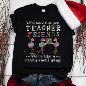 The Best We're More than Just Teacher Friends We're Like A Really Small Gang Flamingo shirt