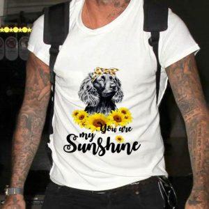 Funny Boykin Spaniel You Are My Sunshine Sunflower shirt