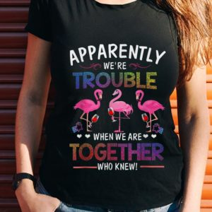 Wonder Apparently We're Trouble When We are Together Who Knew Wine Flamingo shirt